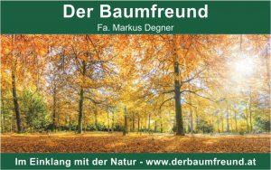 baumfreund-grafik